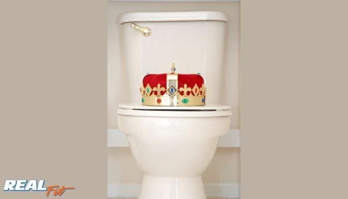 porcelain throne