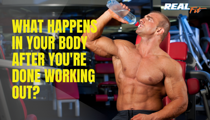 what happens to your body after exercise